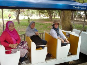 Charity Train in Nami Island
